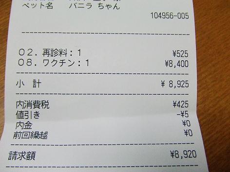 2878.jpg