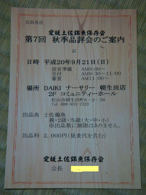 DSC01239.jpg
