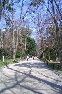 下鴨神社1_090323