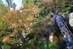 庭園1_091122