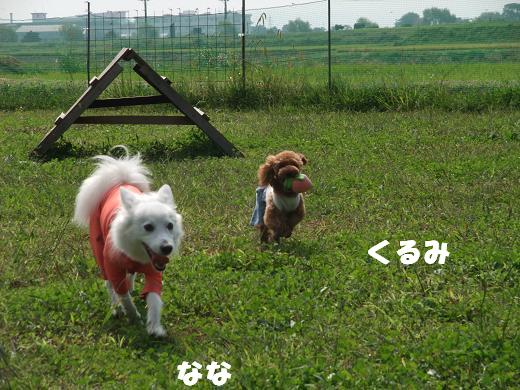花巻・盛岡秋祭り0063