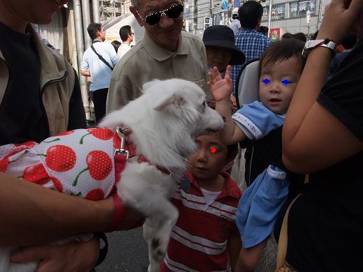 花巻・盛岡秋祭り0077