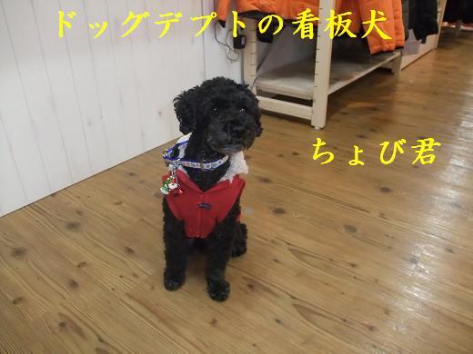 仙台0061