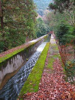 琵琶湖疏水2