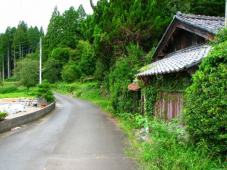nikichi 2007.9.24