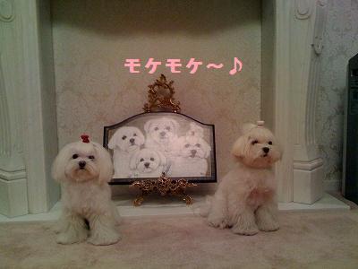 s-photo1.jpg