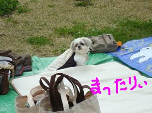 2公園へ (3)