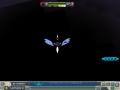 闇に光る羽と頭
