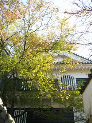 岡山城の秋
