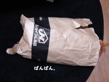 ジョイフルぽん田 (8)
