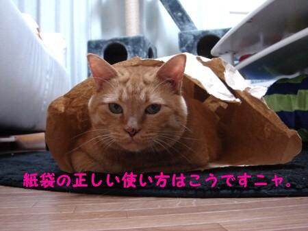 ジョイフルぽん田