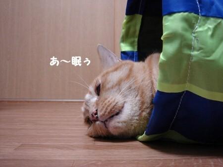 遊び疲れたらそのまま寝袋になります。 (4)