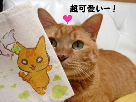 嬉しくて♪可愛くて!! (3)