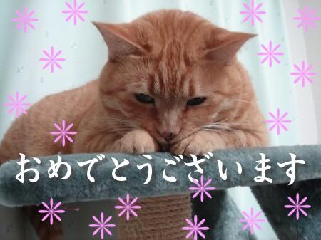 新年にょご挨拶 (2)