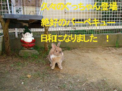 A08.10.14ぐっちゃん登場修正