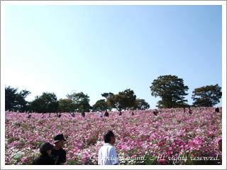20091013_3.jpg