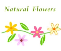 natural flowers-1