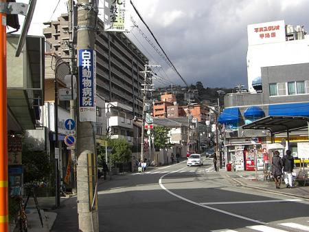 haruhi02-.jpg
