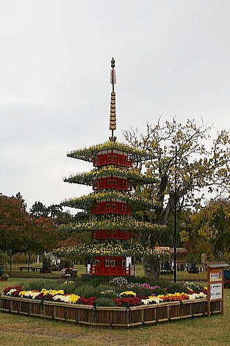 弘前城 菊と紅葉祭り (5)
