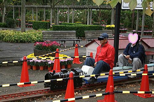 弘前城 菊と紅葉祭り (7)
