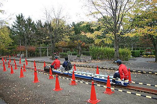 弘前城 菊と紅葉祭り (8)
