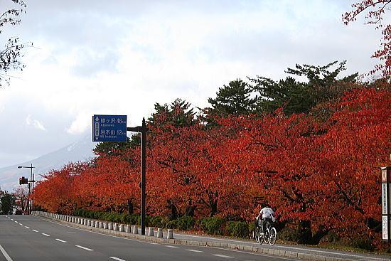 弘前城紅葉1