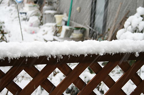 雪景色2008 (2)