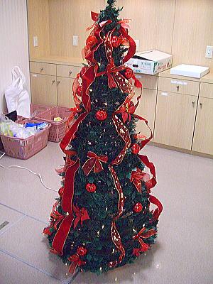クリスマスケーキ2008 (7)
