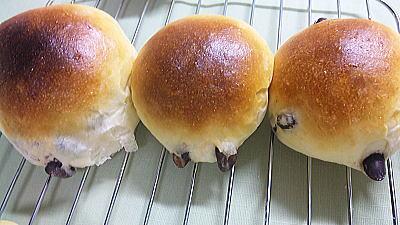 230豆パン