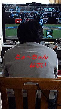 272WBCとうちゃん