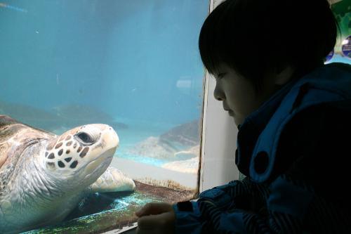 水族館でおはなし