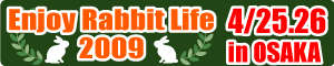 ENJOY-RABBIT_banner-L.jpg