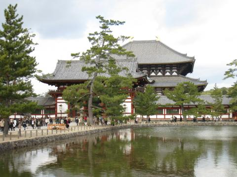 シカだらけじゃぁ、の東大寺