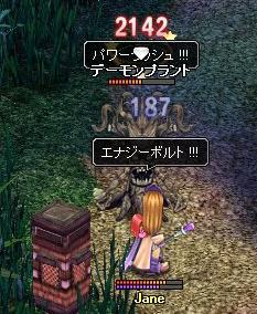79-0428-wani-00.jpg
