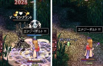 79-0428-wani-01.jpg