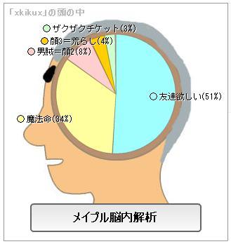 メイプル脳内6
