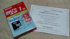 F1000015.jpg