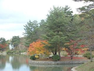 2007-11-19-2.jpg