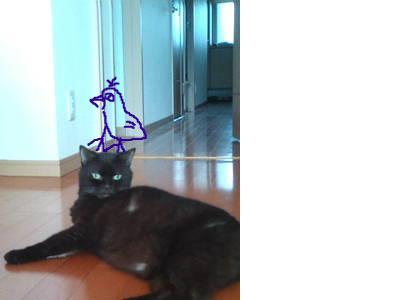 snap_adatiabc123_200910421115.jpg