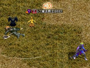 Nov22_kari04.jpg