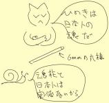 konchu_20081228215210.jpg