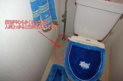 20081030_yuka_fushoku.jpg