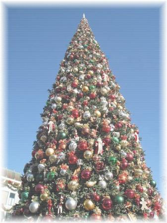 X'mas tree@ disney land