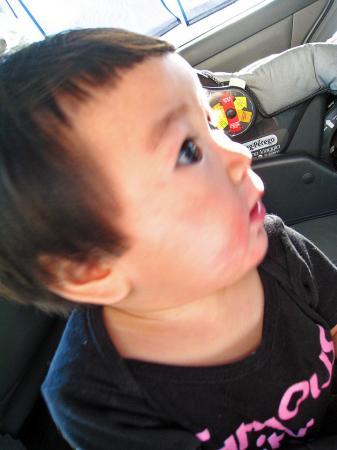 koah in the car2
