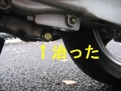 IMG_1086shuuri (6)