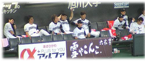 20083189.jpg