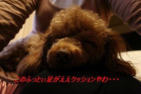 IMG_2412.jpg