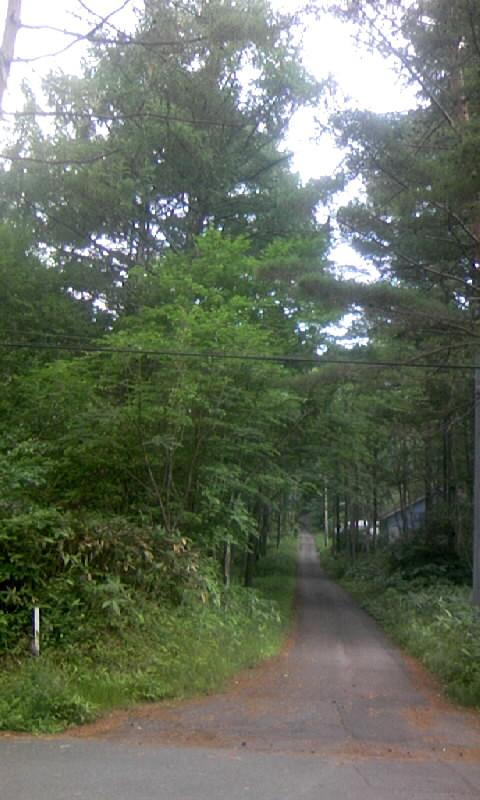 090714_080106山荘からの景色