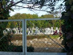 12後に墓地が・・・・・