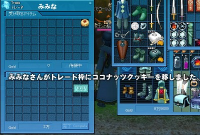 mabinogi_2008_10_28_011.jpg